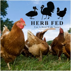 Herb Fed
